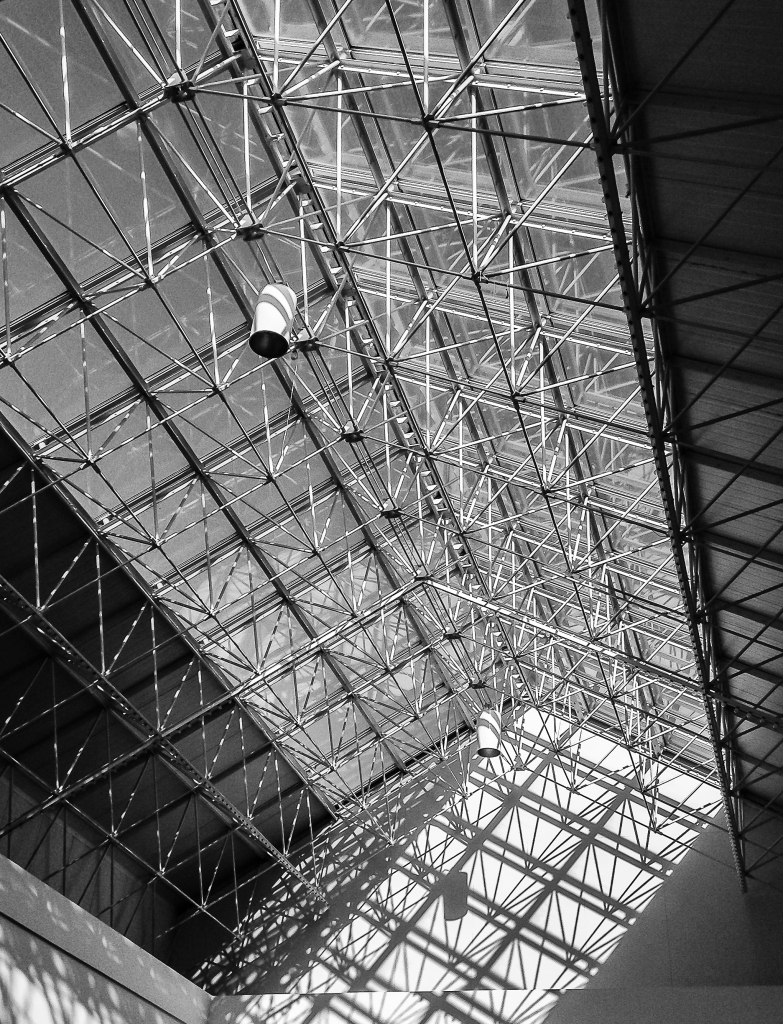 Mall Ceiling (Photo by Francis DiClemente)